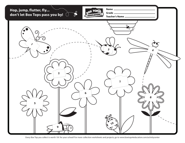 Box Top Worksheets - Sharebrowse